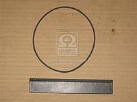Кольцо уплотнительное насоса водяного КАМАЗ (производство БРТ) (арт. 740.1307075)
