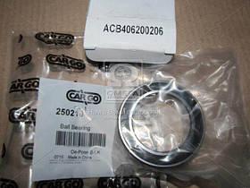 Подшипник (Производство CARGO) 250210, ABHZX