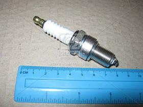 Свеча зажигания (Производство CHAMPION) OE006/T10