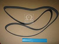 Ремень поликлиновый 9PK2250 (производство DONGIL) (арт. 9PK2250), ACHZX