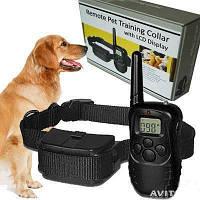 Ошейник для дрессировки собак с пультом ДУ