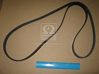 Ремень поликлиновый 6PK1750 (производство DONGIL) (арт. 6PK1750), ABHZX