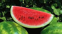 Насіння кавуна АУ-Продюсер/Innova Seeds (500г) — вдосконалений сорт відомого сорту Крімсон Світ, фото 1
