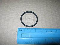 Уплотнительное кольцо ТНВД CR (CP2) 2 469 403 154