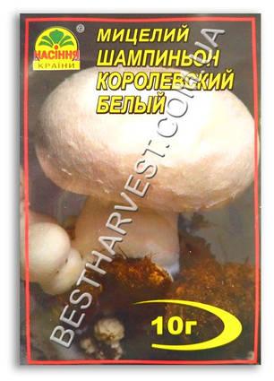 Мицелий «Шампиньон Королевский белый» 10 г, фото 2