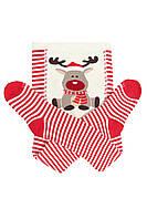 Детские новогодние колготы с оленями 62-68, 80-86, 86-92 DUNA
