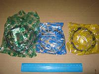 Кольца поршневые комплект (производство RIK), AGHZX