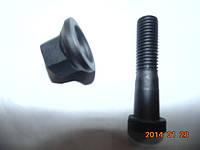 Шпилька ступици задняя, передняя ТАТА 613