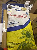 Семена подсолнечника Рими NS Seme