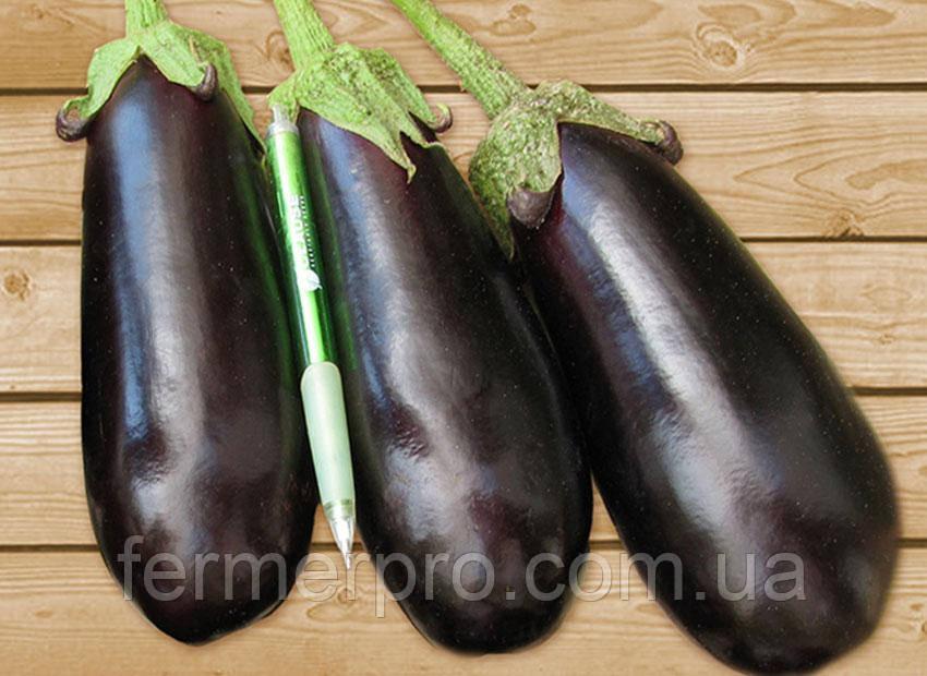 Семена баклажана Классик F1 \ Classik F1 50 грамм Clause