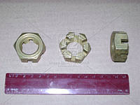 Гайка М24 корончатая пальца рулевого (производство Беларусь) (арт. 251035)