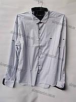 """Мужская рубашка с длинным рукавом БАТАЛ (56-62) """"Ruba"""" купить оптом со склада на 7 км 2RS-5034"""