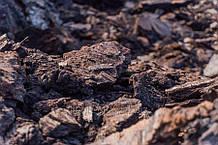 Бурый уголь марки Б 07135