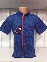 Рубашка на мальчика 12-16 лет Синяя с красными клепками