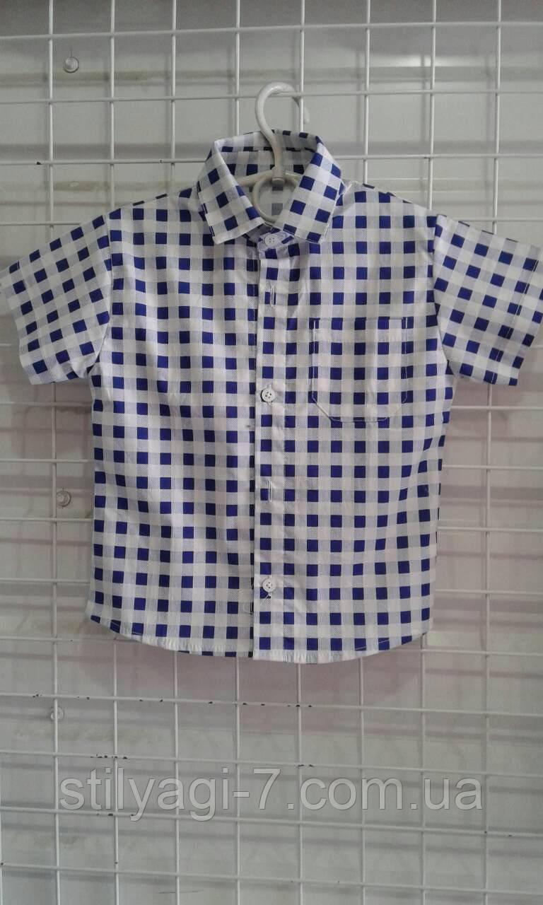 Рубашка на мальчика 2-6 лет белая в клетку приталенная  с коротким рукавом