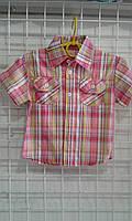 Рубашка на мальчика 2-6 лет белая в красную клетку приталенная  с коротким рукавом