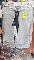 Блузка для девочки на 9-12 лет белая с черным галстуком