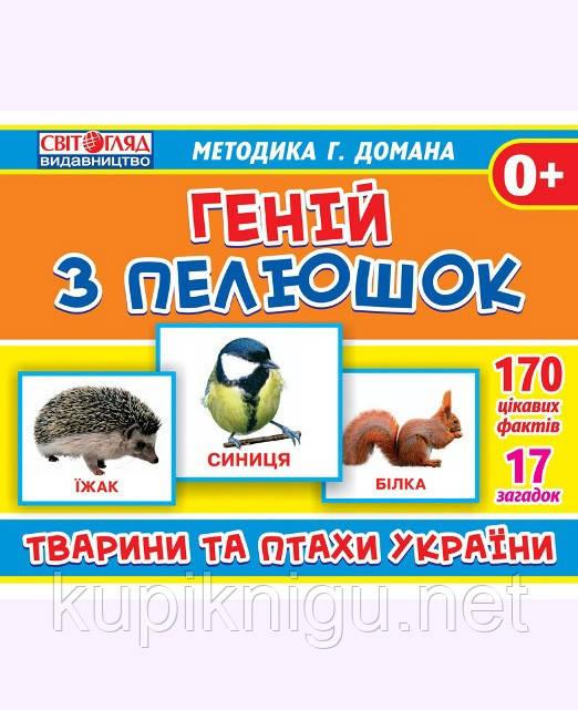 """Геній з пелюшок. """"Тварини та птахи України"""""""