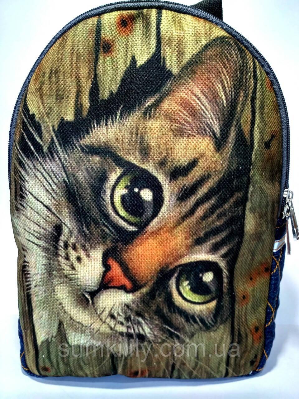 Джинсовый Рюкзак Кот за забором
