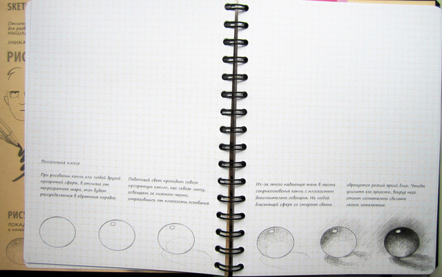 Скетчбук уроки рисования базовый уровень