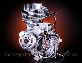 Двигатель Viper-MINSK CG-150сс TMMP