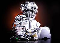 Двигатель в сборе Minsk-Viper CB 150cc LIFAN