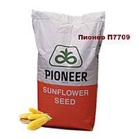 Насіння кукурудзи Піонер Р7709 (ФАО 190)/Семена кукурузы Пионер  Р7709 (ФАО 190)