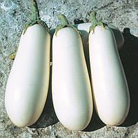 Семена баклажана Бибо F1 (Bibo F1) 1 000 сем.