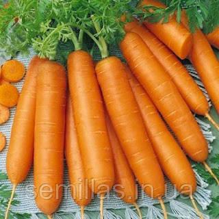 Семена моркови Болеро F1 (Bolero F1), 25000 сем.