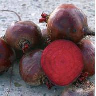 Семена свеклы столовой Болтарди (Boltardy) 100 000 сем.