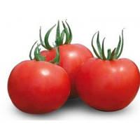 Семена томата полудетерминантного Силуэт F1 (Siluet F1) 500 сем.