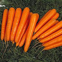Семена моркови Лагуна F1 (Laguna F1), 100000 сем. (1,8-2,0 мм)