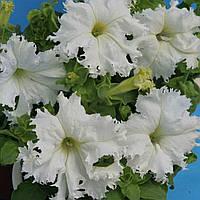 Семена петуния Крайковый Завой F1, грандифлора бахромчатая белая 50 драже