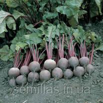Семена свеклы столовой Пабло F1 (Pablo F1) 50 000 сем.