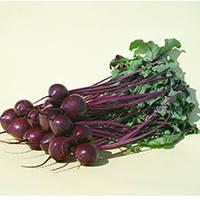 Семена свеклы столовой Водан F1 (Wodan F1) 10 000 сем.