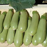 Семена кабачка Асма F1 (Asma F1) 500 сем.