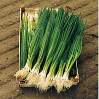 Семена лука на перо Параде (Parade) 250 000 сем.