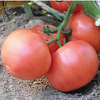 Семена томата Эсмира F1 (Esmira F1,) 100 сем., розового индетерминантного (высокорослого)