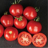 Семена томата для переработки Шаста F1 (Shasta F1) 1 000 сем.