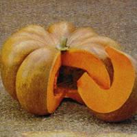 Семена тыквы Мускат де Прованс (Muscat deProvans), 100 гр.