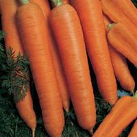 Семена моркови Наполи F1 (Napoli F1) 25 000 сем. (1,6-1,8 мм)