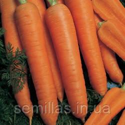 Семена моркови Наполи F1 (Napoli F1) 100 000 сем. (1,6-1,8 мм)
