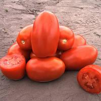 Семена томата Клaccик F1 (Classic F1), 1000 сем., для переработки