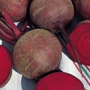 Семена свеклы Hoбoл (Nobol), 5 кг., столовой