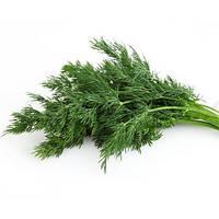 Семена укропа Дилл (Dill), 500 гр.