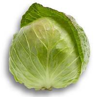 Семена капусты белокочанной ранней Адема F1 (Adema F1) 2 500 сем.