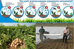 Агроволокно для картофеля