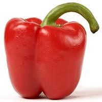 Семена перца Геркулес F1 (Hercules F1), 50 гр., сладкого