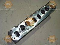 Головка блока Газель УМЗ 4216 инжекторный двиг. (с седлами для клапанов и втулками направляющими) (пр-во Ульяновск Россия)