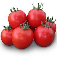 Семена томата для переработки Асвон F1 (Aswan F1) 10 000 сем.